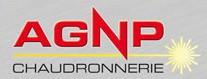 agnp-laser-logo